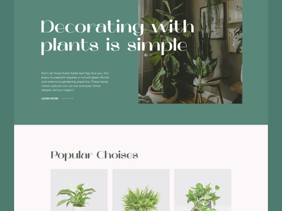 KS Plants - Add to Cart add to bag add to cart plantshop plants animation interaction store landing page landing web design ui