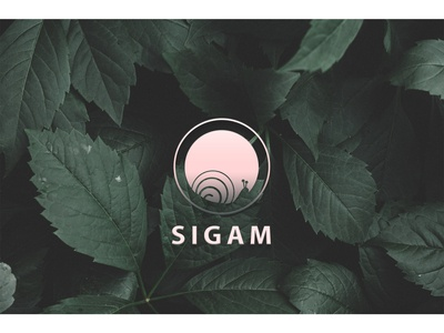 Sigam logo logotype logodesign snail graphic design photoshop illustraion creative  design creative design flat web app ux ui icon typography branding vector logo
