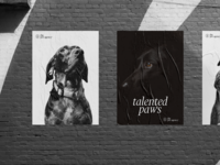 The Pet Agency Poster Ads