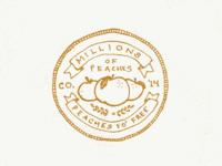 Colorado badge #2