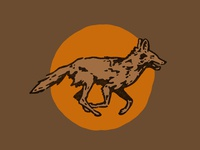 Coyotes Guide