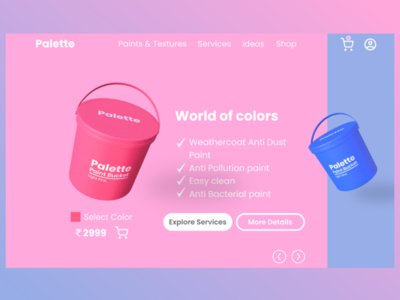 Paint e-commerce website design