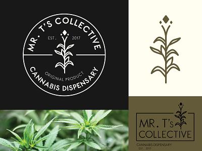 Mr. T's Collective Cannabis Dispensary Logo art clean icon illustrator flat minimal lettering identity type vector illustration design typography logo cannabis branding cannabis design cannabis logo cannabis