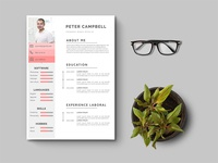 Free Clean Illustrator Resume Template