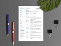 Free Editable Indesign Resume