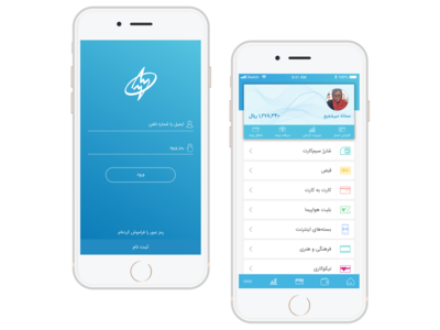 Payment application, Login page