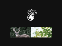 Leaf Deer Logo Idea
