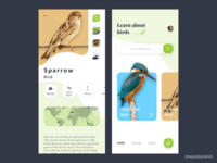 Learn About Birds.