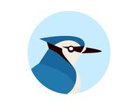 Bluejay Labs logo