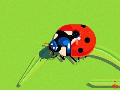 Daily Doodle Exercise - Ladybug adobe illustrator flat design illustration digital texture illustration daily exercise contrast green blue red lady beetle ladybird geometric vectorart vector illustration vector daily illustration daily vector daily doodle