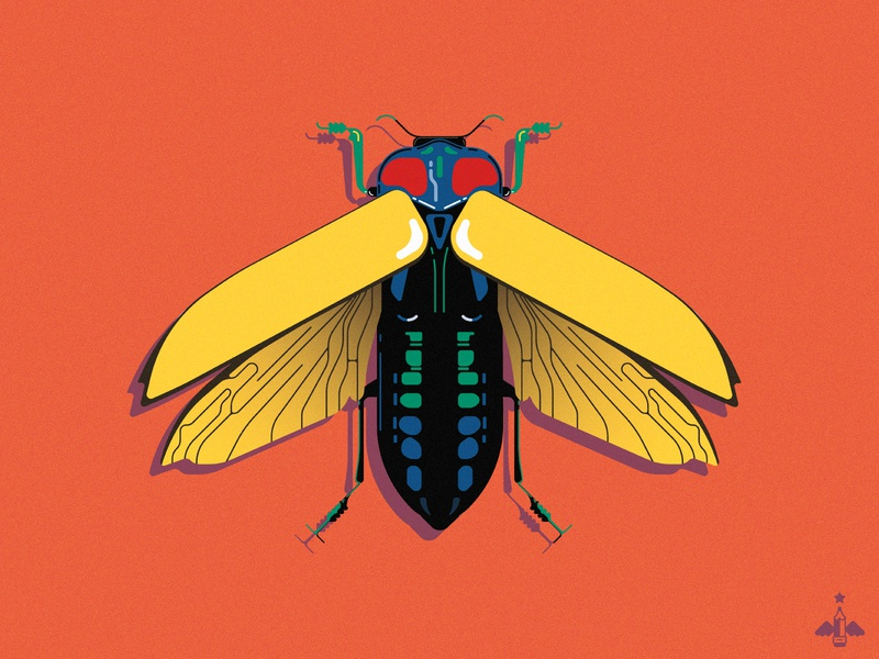 Daily Doodle Exercise - Colorful Beetle geometric graphic design nature daily illustrations product design flat design green blue yellow orange contrast color wings bug insect beetle daily vector daily illustration daily art daily doodle