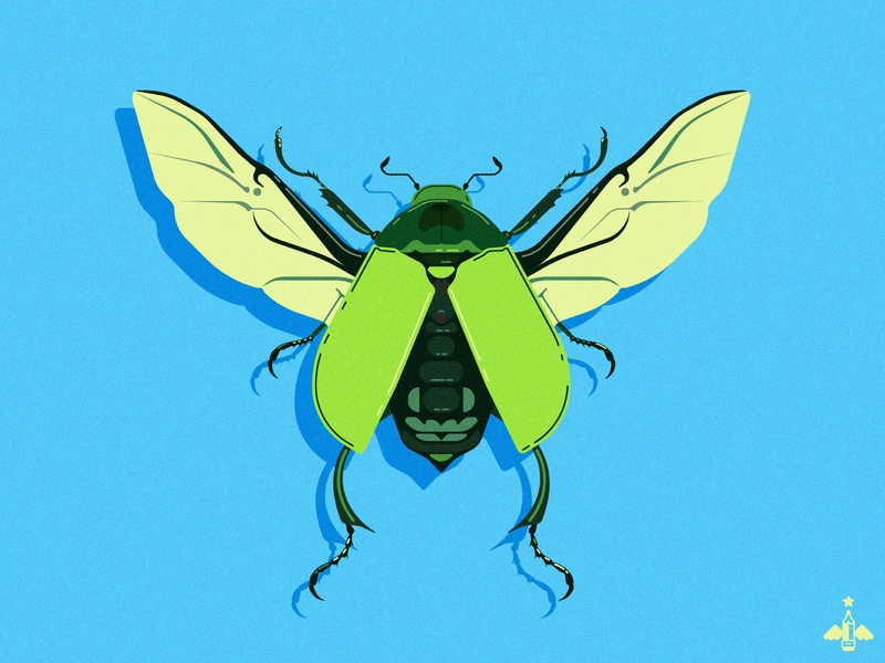 Daily Doodle Exercise - Beetle creative graphic designer flat designs beetle daily art flat design vectors vector art contrast hues green blue bright color bright digital artist vector artist vector illustration digital illustration daily illustration daily doodle