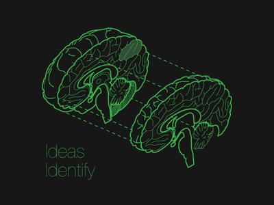 Ideas Identify cross section splitting artwork illustration complex isometric brain ideas