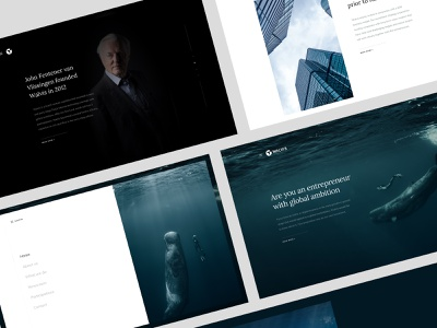 Investment website webdesign investing investments clean uidesign ui  ux buildings whale exploration business website investment