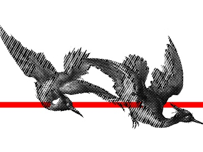 MOVEMENT simple halftones halftone bird halftone grunge design grunge aesthetic graphicdesign design daily poster daily post contrast cognitive cleveism bird icon movement bird graphic design bird graphic bird aesthetic abstract