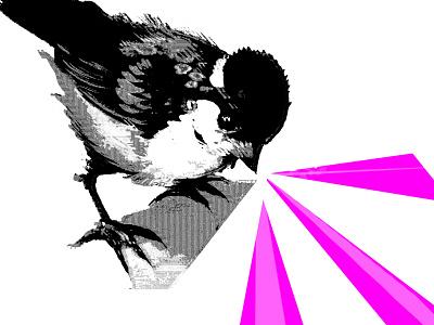 CHIRP 02 bird meme meme bird chirp halftone halftones halftone bird contrast daily post dailyposter graphicdesign simple graphic design abstract design graphic design bird graphic design bird graphic bird aesthetic abstract