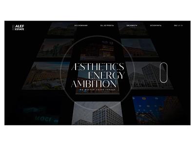 Alef Estate branding logo illustration ukraine concept portfolio ui animation design web