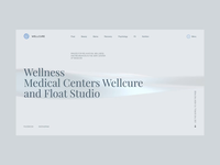 Wellcure corporate website