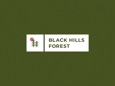Tour of Terror | Week 2 -- Black Hills Forest blair witch october moon trees hills forest map topography typography type tour of terror