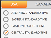 Time Zone Selector