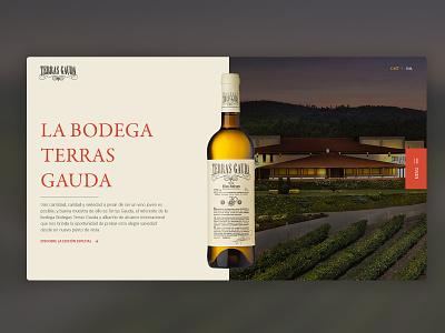 Terras Gauda | Landing Page vino terrasgauda packaging wine uidesign ui landingpagedesign landingpage