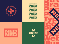 NED 2019