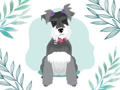Coqui the Miniature Schnauzer dog illustration dog wacom intuos design illustration