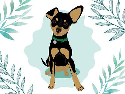 Louis the Prague Ratter dog dog illustration wacom intuos design illustration
