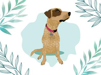 Bonnie the rescued Dog dog dog illustration wacom intuos design illustration