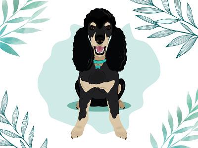 Harry the Phantom Poodle dog illustration dog design wacom intuos illustration
