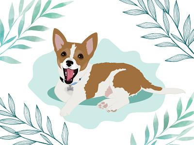 ROMEO dog illustration dog wacom intuos design illustration