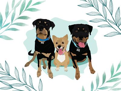Hunter, Jackie & Boss pomeranian rottweiler dog dog illustration design wacom intuos illustration