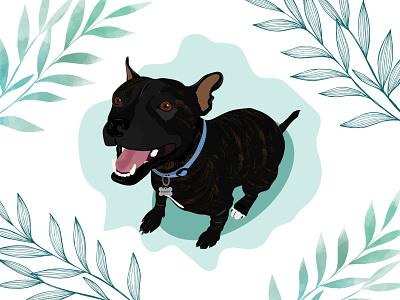 Buddy dog dog illustration wacom intuos design illustration