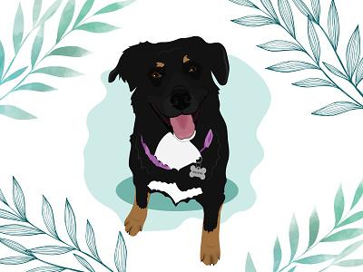 Olivia dog illustration dog wacom intuos design illustration