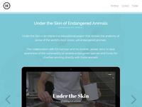 Portfolio - Under the Skin