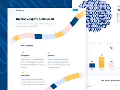 DEI Dashboard web design graphs charts data brushes brush texture typography type data visualization dashboard
