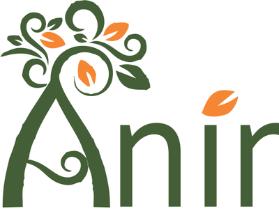Animus Logo1 typography vector branding logo