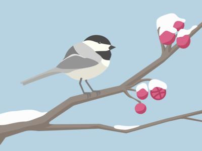 Debut-iful Chick-a-dee-dee-dee debut bird chickadee illustration winter flat berries tree sketch