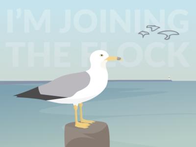 Joining the Flock at Elegant Seagulls seagull elegant seagulls bird illustration sketch