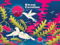 Sweet Caroline artwork