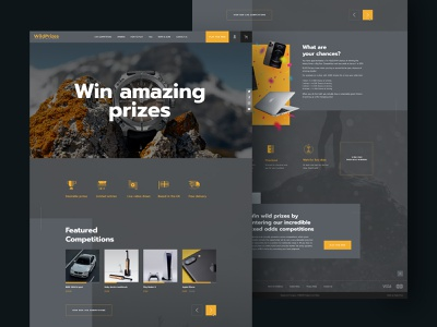 Wild Prizes website uiux dailyui dark mode betting lottery icon wireframe interface webdesign typography gaming ui ux design