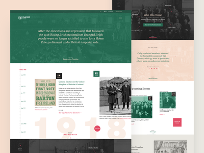 Dail100 Homepage ireland dublin website ui serif pink peach green timeline history government irish