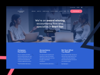 Accountant Online Landing content strategy ux ui website web pattern black navy pink blue online accountant