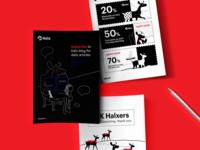 Halx | Brand Identity Design