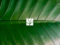Greengarden 8