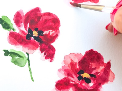 Red Poppies watercolor illustration plants blooms floral flowers poppy