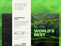 Forest | Free PSD