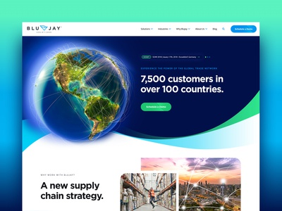 Blujay Solutions Global Trade Network