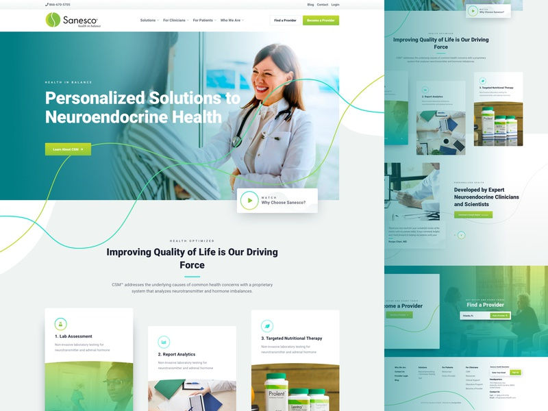 Sanesco : Health in Balance designzillas doctor dna health web design