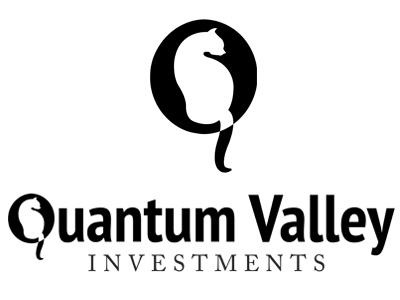 QVI Logo quantum investments branding science nanotechnology
